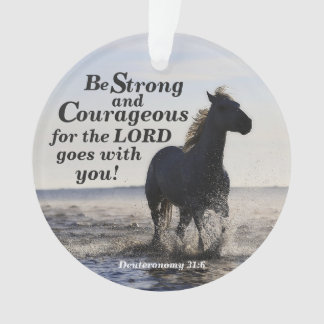 Be Strong and Courageous, Deut 31 Horse Custom