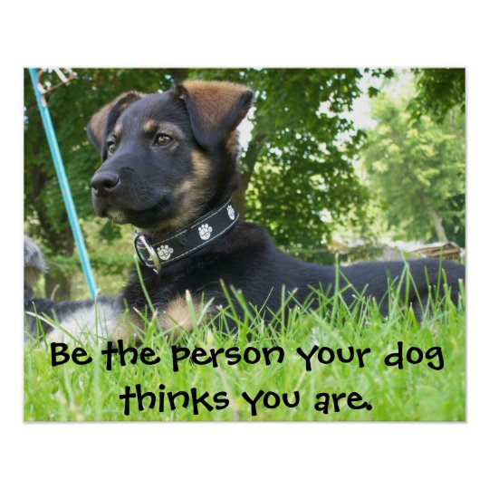 Be the Person your Dog thinks you are, Poster