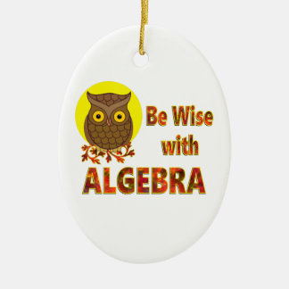 Be Wise With Algebra Ceramic Oval Ornament