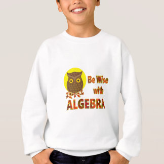 Be Wise With Algebra Sweatshirt