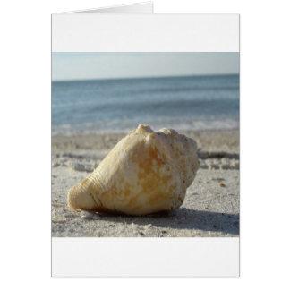 Beach A Clear Water Shell Card