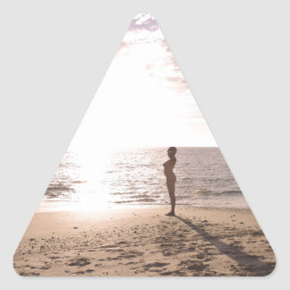 Beach and Life Triangle Stickers