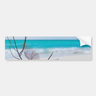 beach-and-sea-concept beach beauty blue caribbean bumper sticker