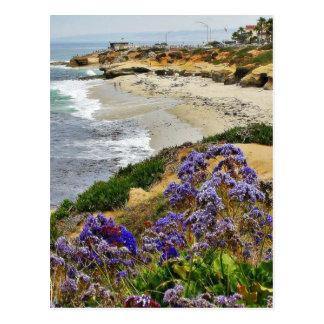 Beach At La Jolla Cove Postcard