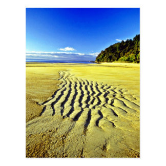 Beach At Low Tide, Abel Tasman National Park Postcard