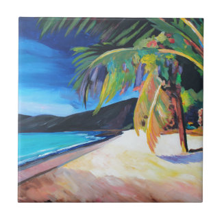 Beach at Magen's Bay St Thomas US Virgin Islands Tile