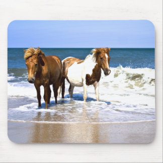 Beach Beauties Horses mouse pad