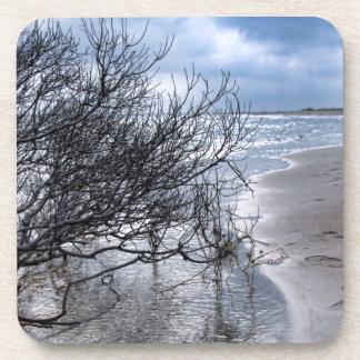 Beach Branch Beverage Coasters