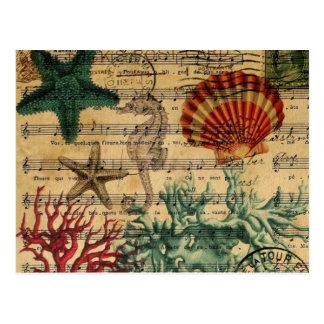 beach chic coastal coral seahorse seashell postcard