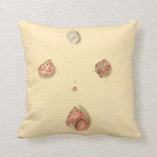 Beach Decor Accent Pillow Small Sea Shells