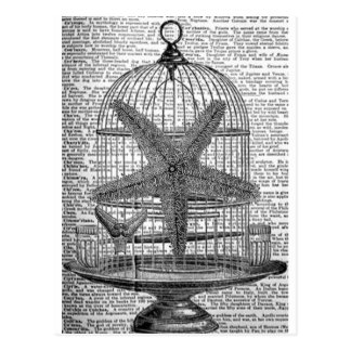 beach dictionary print steampunk Birdcage Starfish Postcard