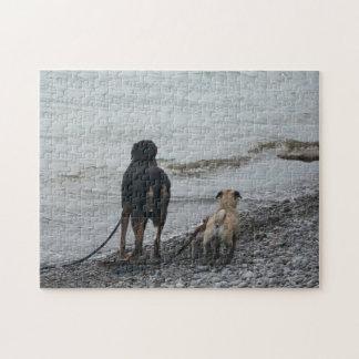 Beach Dogs Jigsaw Puzzle