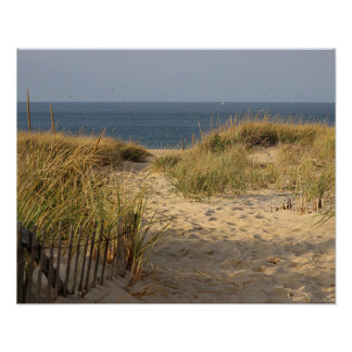Beach fence in the sand dunes poster
