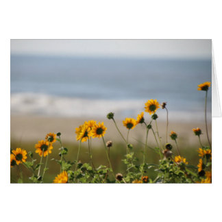 Beach Flowers on Galveston Island Card