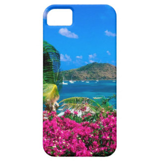 Beach French Cul De Sac Saint Martin iPhone 5 Cases