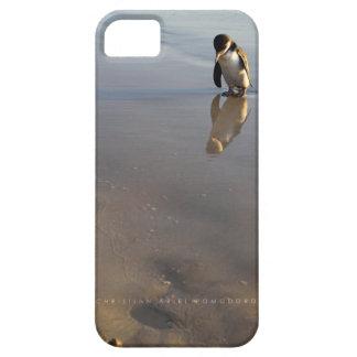 Beach Going Penguin iPhone 5 Case