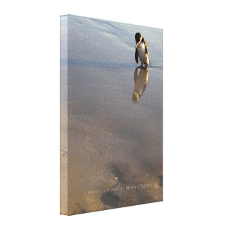 Beach Going Penguin Stretched Canvas Prints