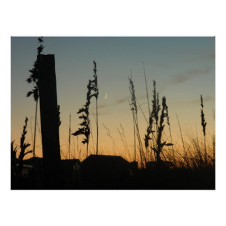 Beach Grass and Houses at Dusk Poster