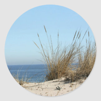 Beach Grass and Ocean Stickers