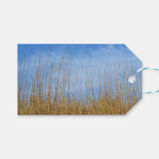 Beach Grass by Shirley Taylor Pack Of Gift Tags