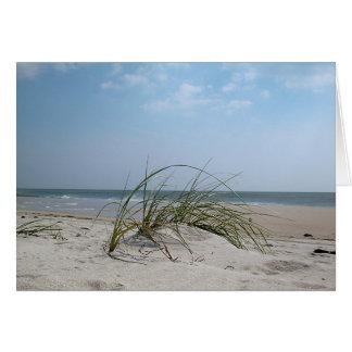 Beach Grass Card
