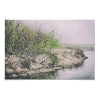 Beach Grass Sand Dunes Spring Trees Lake Michigan Photo Print