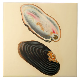 Beach House Ceramic Wall Tile Oysters