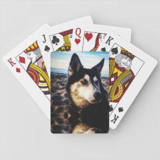 Beach Husky Playing Cards
