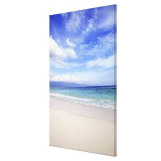 Beach in Hawaii Canvas Print