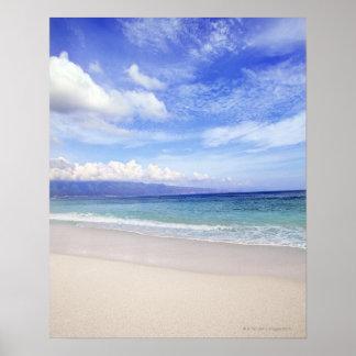 Beach in Hawaii Poster