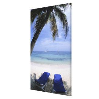 Beach, Lounge Chair, Palm tree, Horizon Over Canvas Print