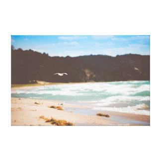 Beach | Ocean | Sea | Seagulls Canvas Print