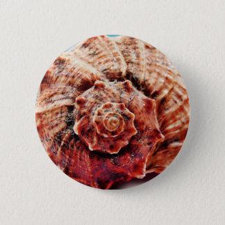 Beach Ocean Sea Shell 2 Inch Round Button