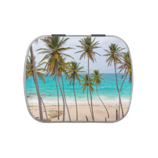 Beach Ocean with Palm Trees