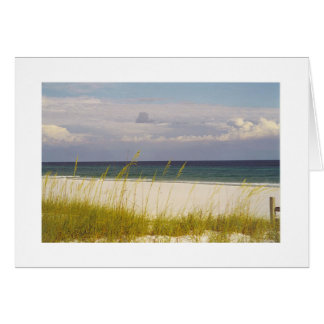 beach on the Gulf of Mexico 2 card