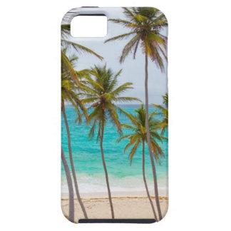 Beach Palms iPhone 5 Case