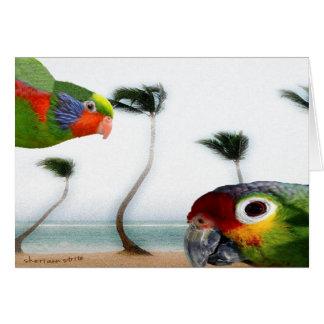 Beach Parrots Card
