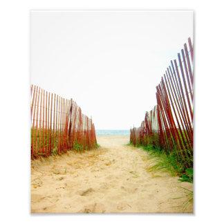 Beach Path Fence Photo