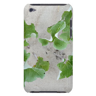 Beach Plants Barely There iPod Cases