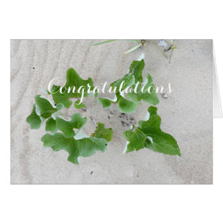 Beach Plants Card