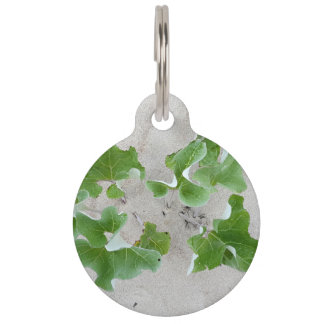 Beach Plants Pet Name Tag