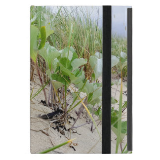 Beach plants summer cover for iPad mini