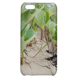 Beach plants summer iPhone 5C covers