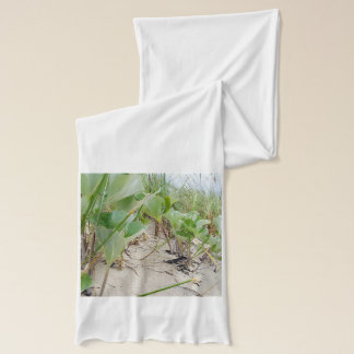 Beach plants summer scarf