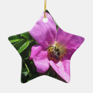 Beach Plum Rose with Bee Ceramic Star Ornament