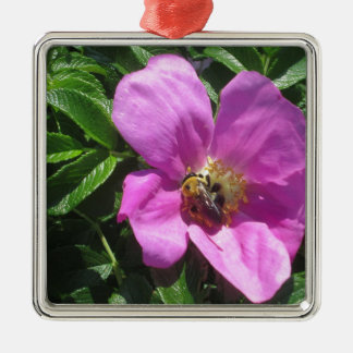 Beach Plum Rose with Bee Silver-Colored Square Ornament