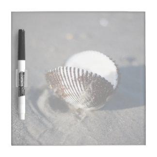 Beach Sand Sea Shell Dry Erase Board