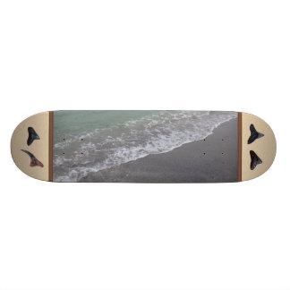 Beach Scene Caspersen Beach Venice Fl Shark Teeth Skate Board Decks