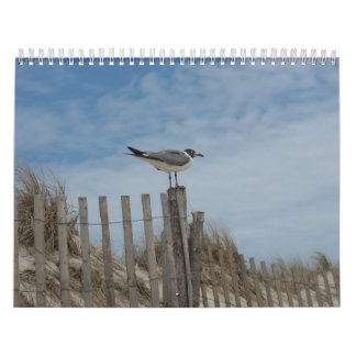 Beach Scenes 19 month 2011-2012 Calendar