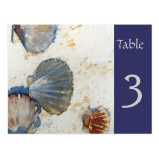 Beach Sea Shells Table Number Card